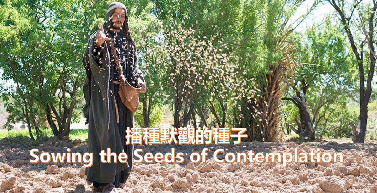 播種默觀的種子